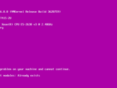 could not load multiboot modules 01